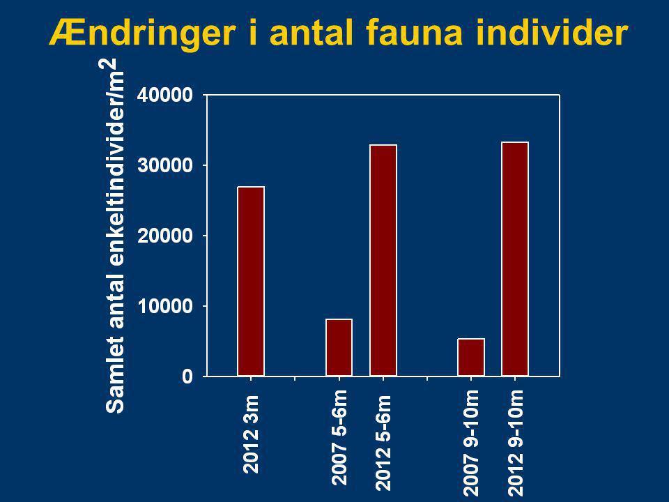 Ændringer i antal fauna individer