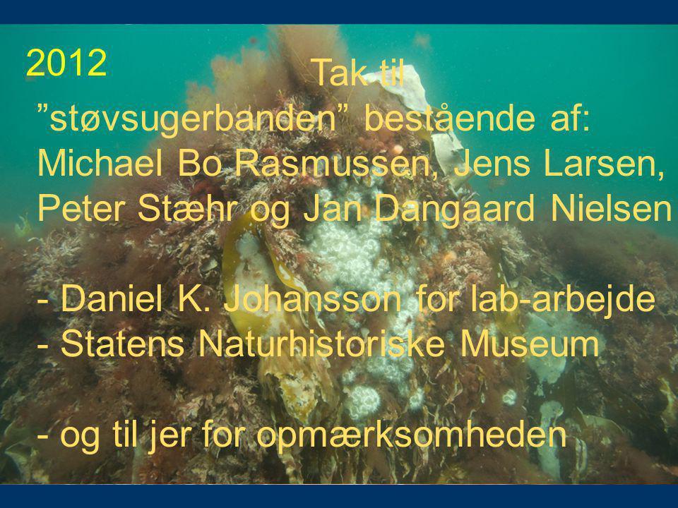 2008 2011. 2009. 2006 (før) 2012. Tak til. støvsugerbanden bestående af: Michael Bo Rasmussen, Jens Larsen,