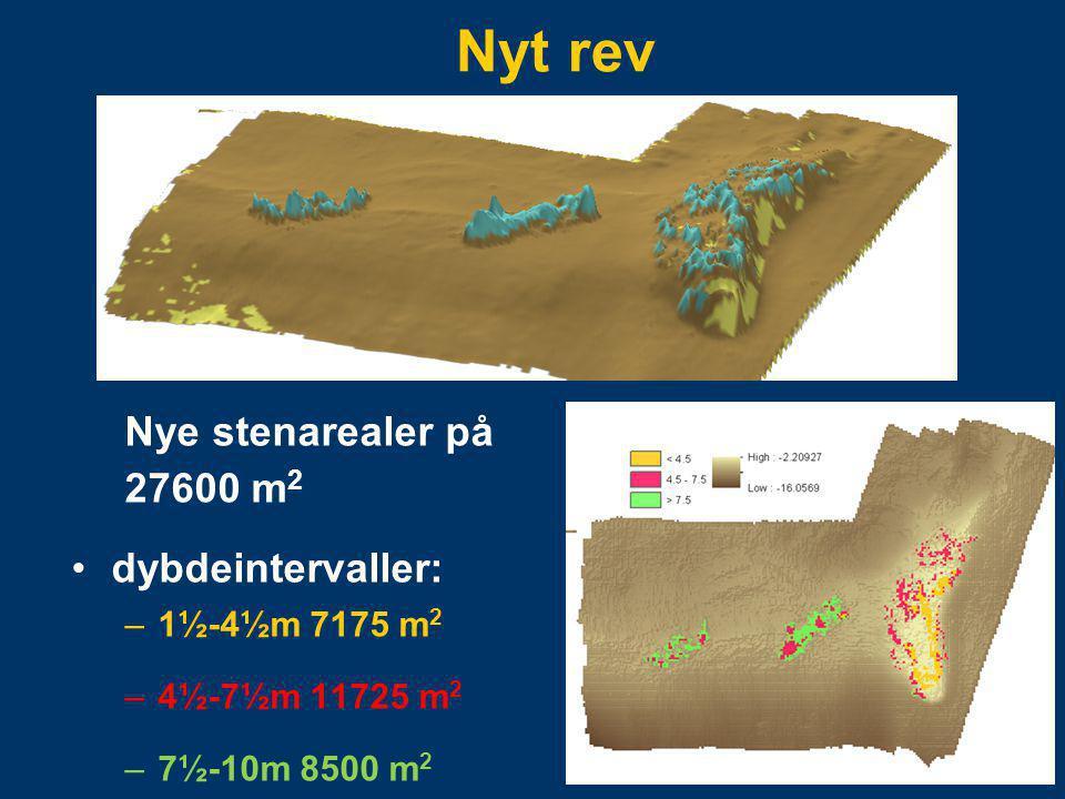 Nyt rev Nye stenarealer på 27600 m2 dybdeintervaller: 1½-4½m 7175 m2