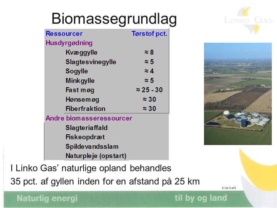 Biomassegrundlag I Linko Gas' naturlige opland behandles 35 pct. af gyllen inden for en afstand på 25 km