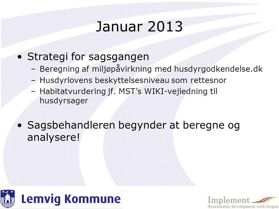 Januar 2013 Strategi for sagsgangen