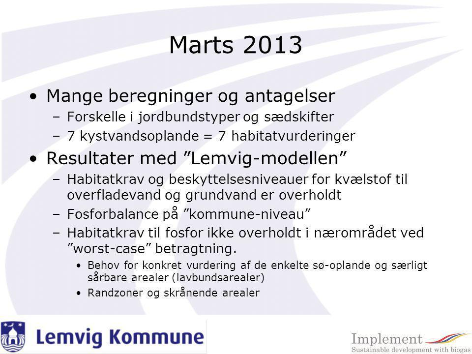Marts 2013 Mange beregninger og antagelser