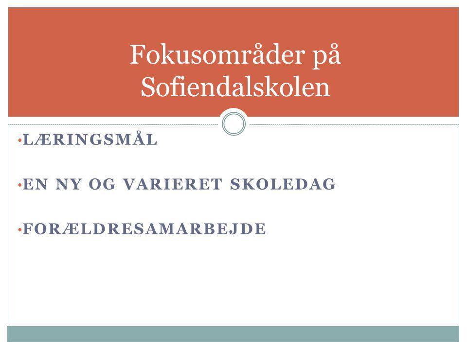 Fokusområder på Sofiendalskolen