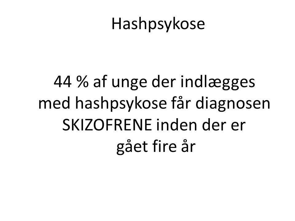 med hashpsykose får diagnosen SKIZOFRENE inden der er gået fire år
