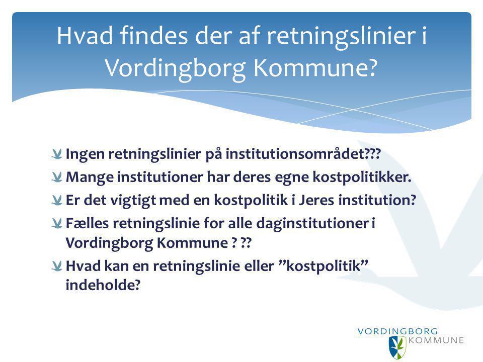 Hvad findes der af retningslinier i Vordingborg Kommune