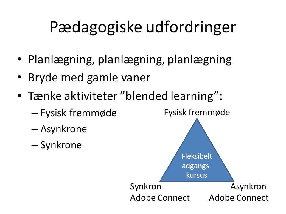 Pædagogiske udfordringer