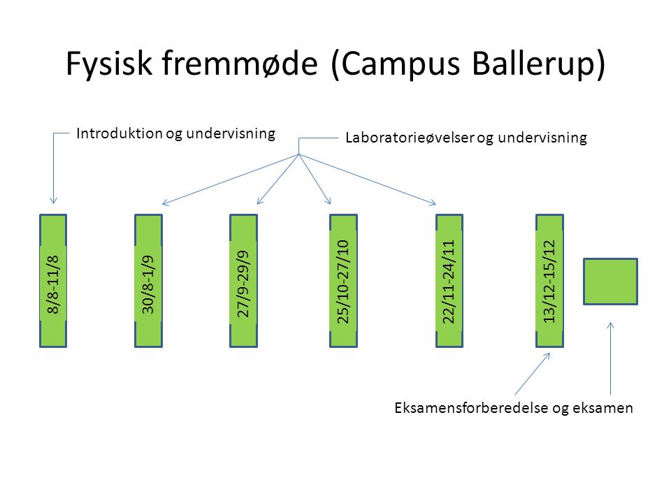 Fysisk fremmøde (Campus Ballerup)