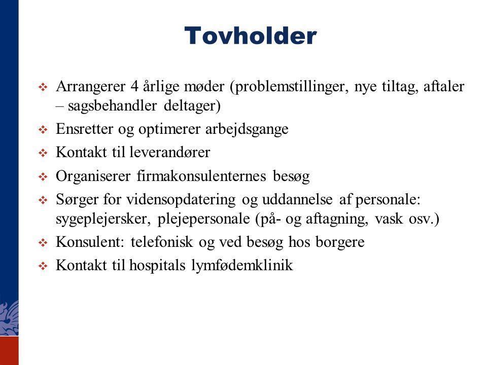 Tovholder Arrangerer 4 årlige møder (problemstillinger, nye tiltag, aftaler – sagsbehandler deltager)