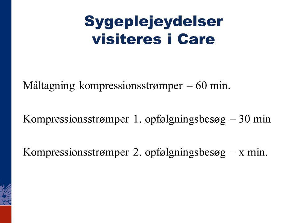 Sygeplejeydelser visiteres i Care