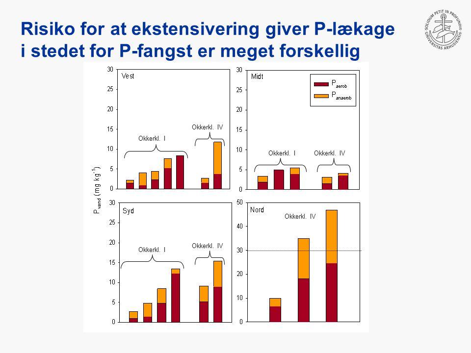 Risiko for at ekstensivering giver P-lækage i stedet for P-fangst er meget forskellig