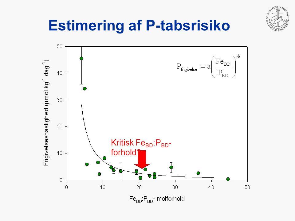 Estimering af P-tabsrisiko