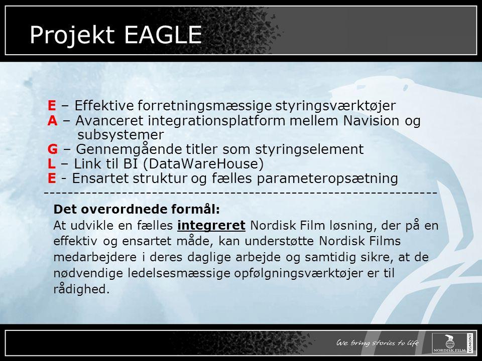 Projekt EAGLE E – Effektive forretningsmæssige styringsværktøjer