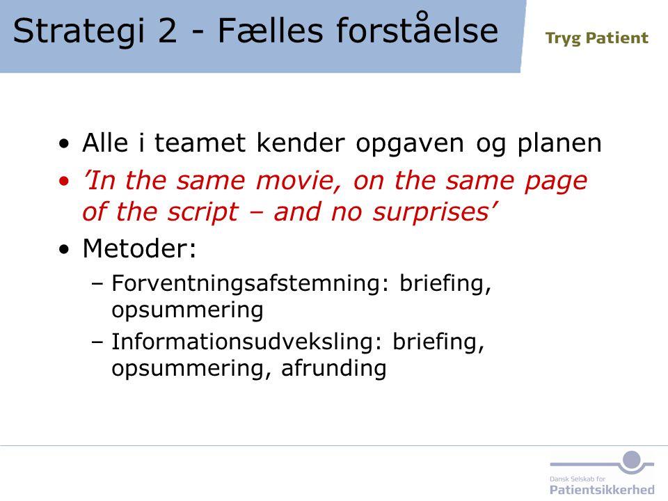 Strategi 2 - Fælles forståelse