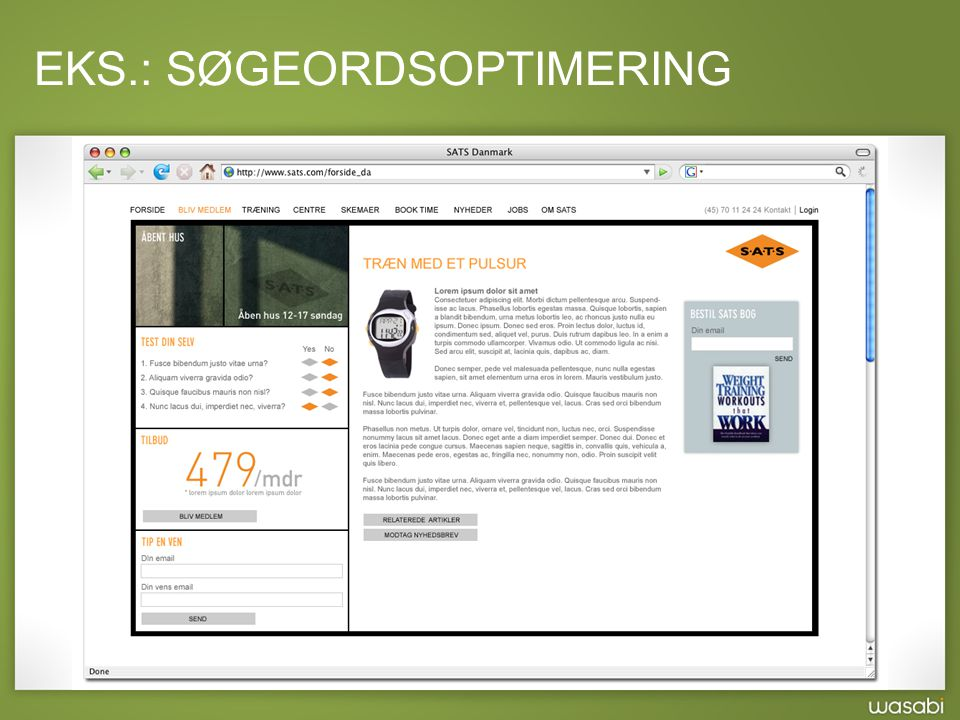 EKS.: SØGEORDSOPTIMERING