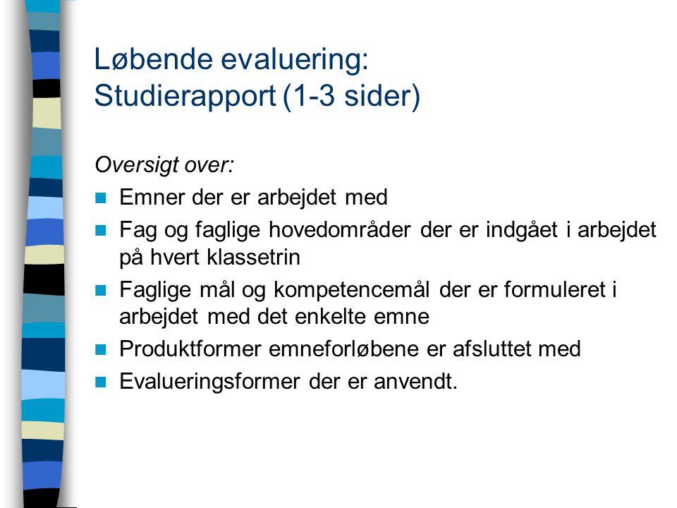 Løbende evaluering: Studierapport (1-3 sider)