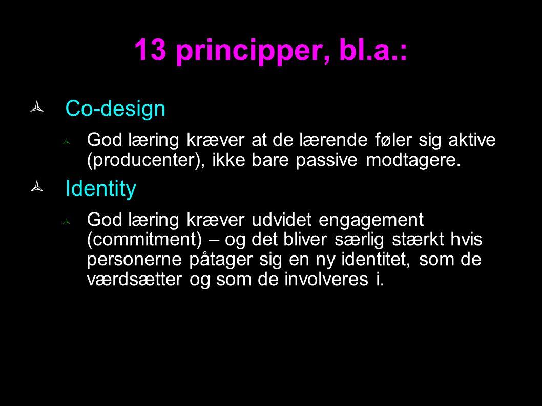 13 principper, bl.a.: Co-design Identity