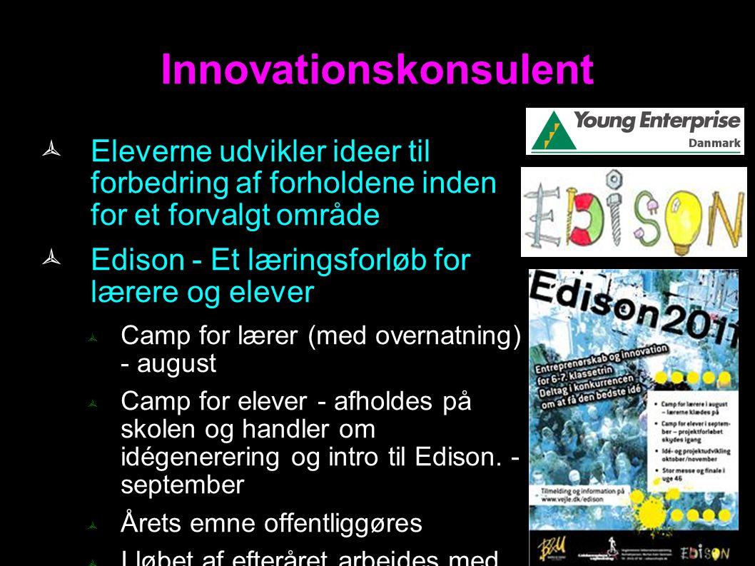 Innovationskonsulent