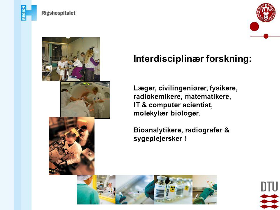 Interdisciplinær forskning: