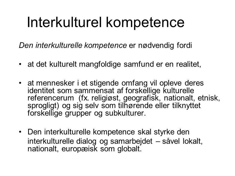 Interkulturel kompetence
