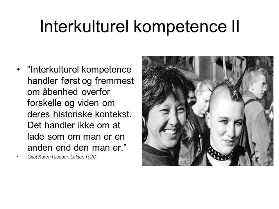 Interkulturel kompetence II