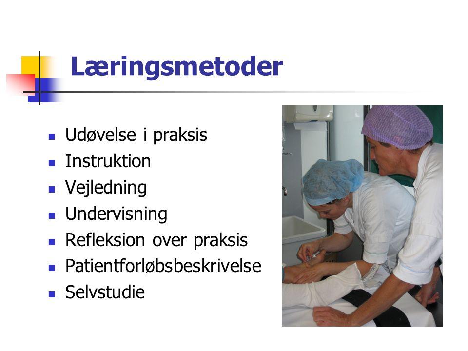 Læringsmetoder Udøvelse i praksis Instruktion Vejledning Undervisning