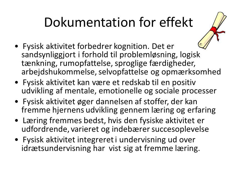 Dokumentation for effekt