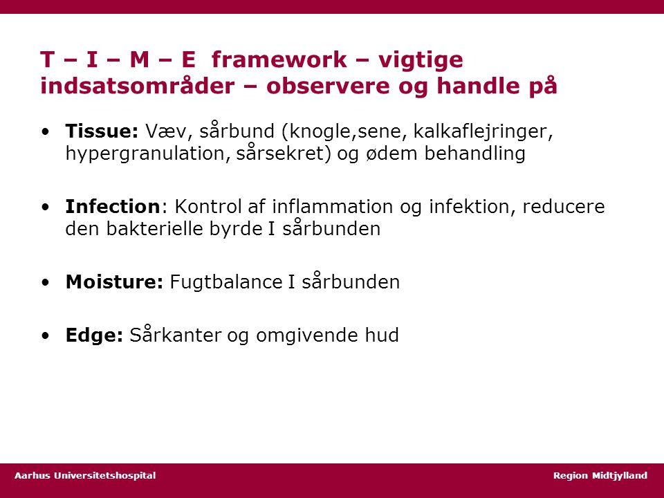 T – I – M – E framework – vigtige indsatsområder – observere og handle på