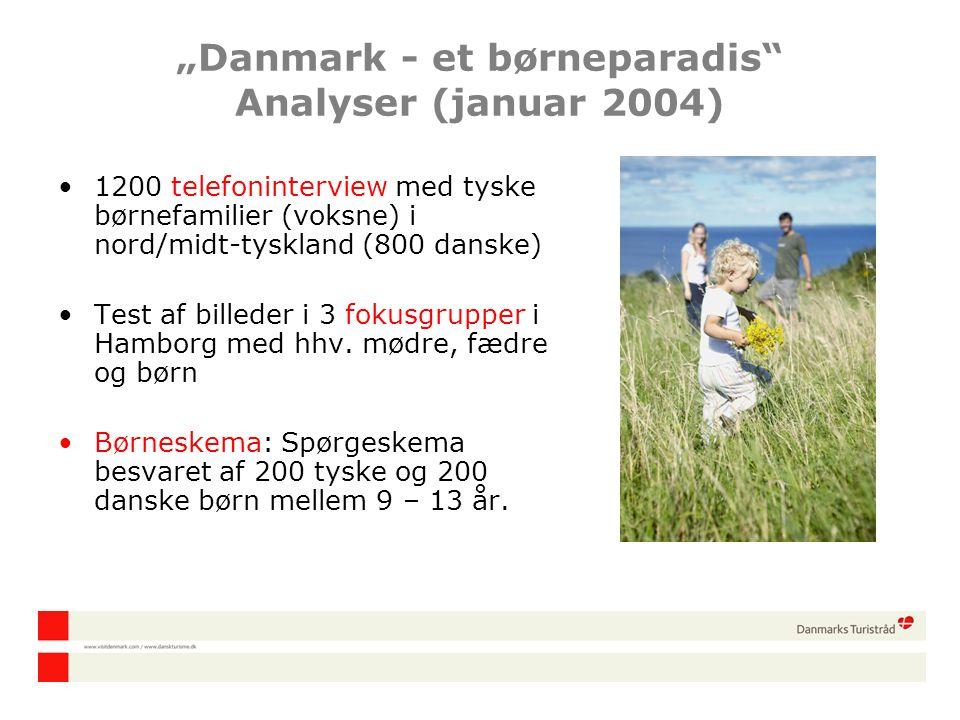 """Danmark - et børneparadis Analyser (januar 2004)"
