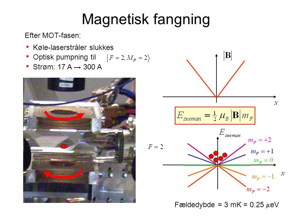 Magnetisk fangning Efter MOT-fasen: Køle-laserstråler slukkes