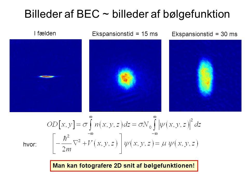 Billeder af BEC ~ billeder af bølgefunktion