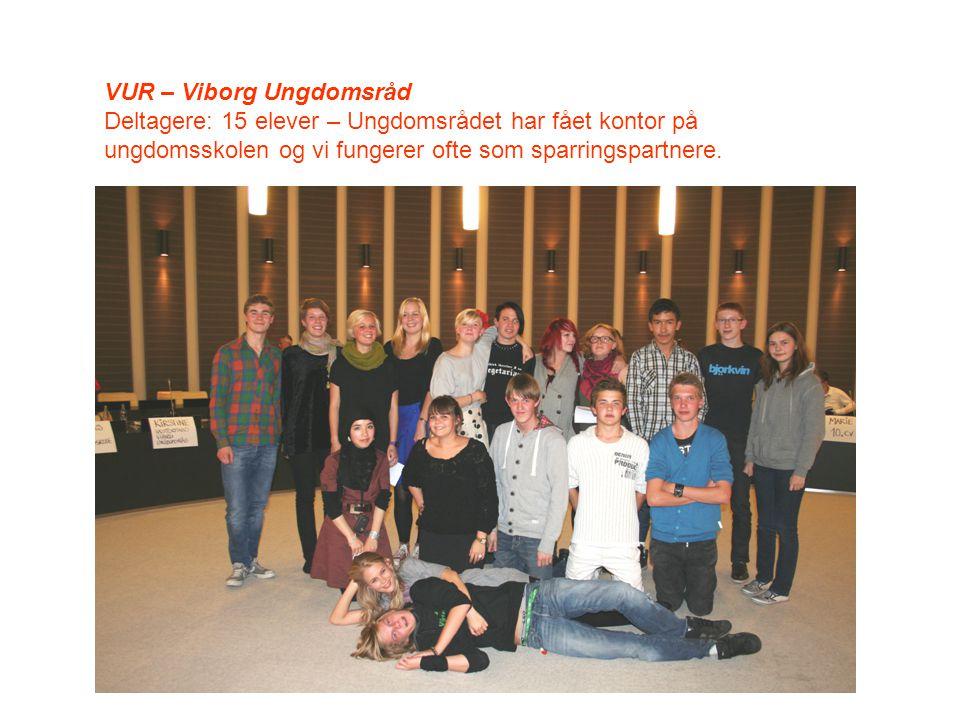 VUR – Viborg Ungdomsråd