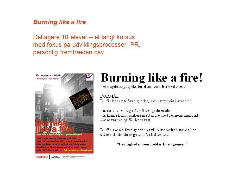 Burning like a fire Deltagere:10 elever – et langt kursus med fokus på udviklingsprocesser, PR, personlig fremtræden osv.