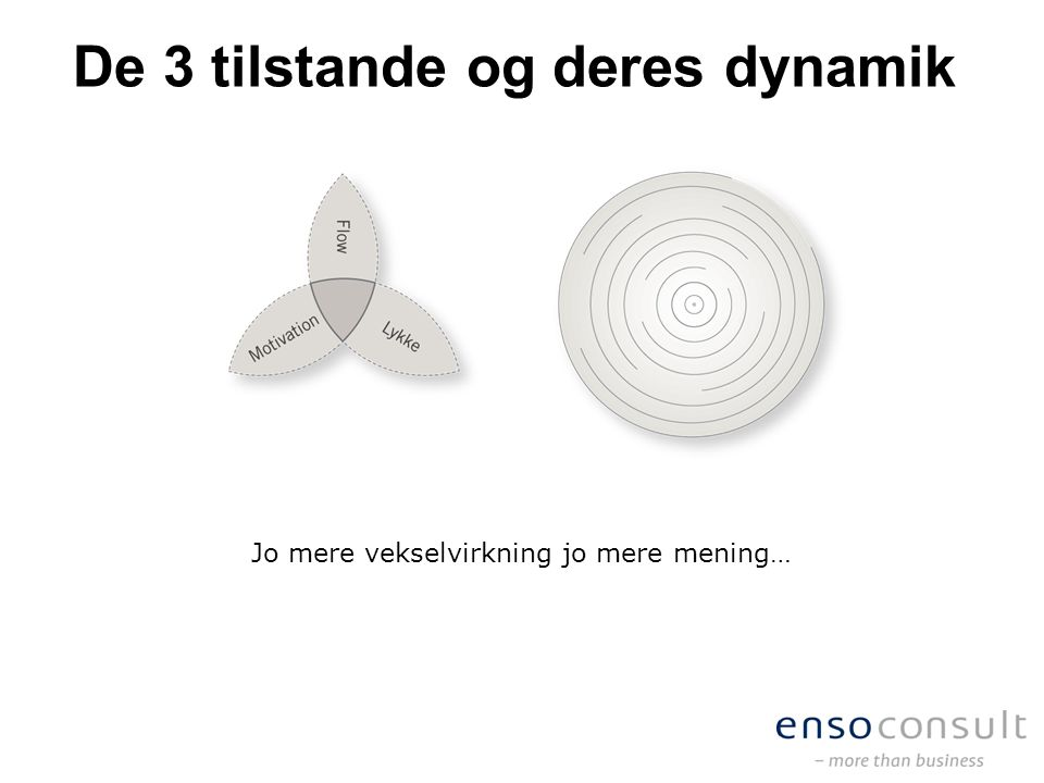 De 3 tilstande og deres dynamik