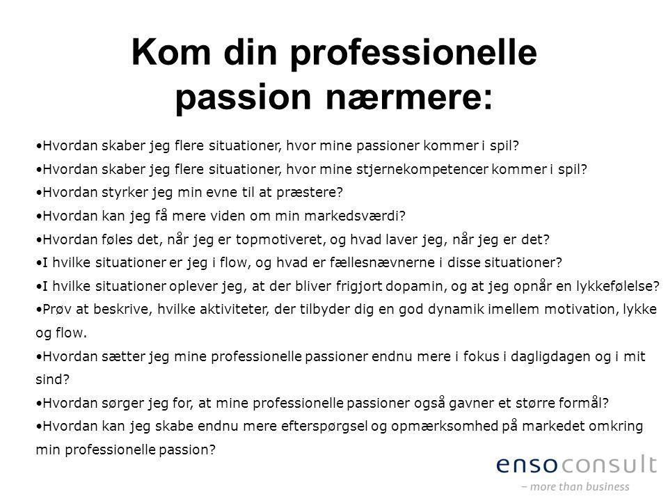 Kom din professionelle passion nærmere: