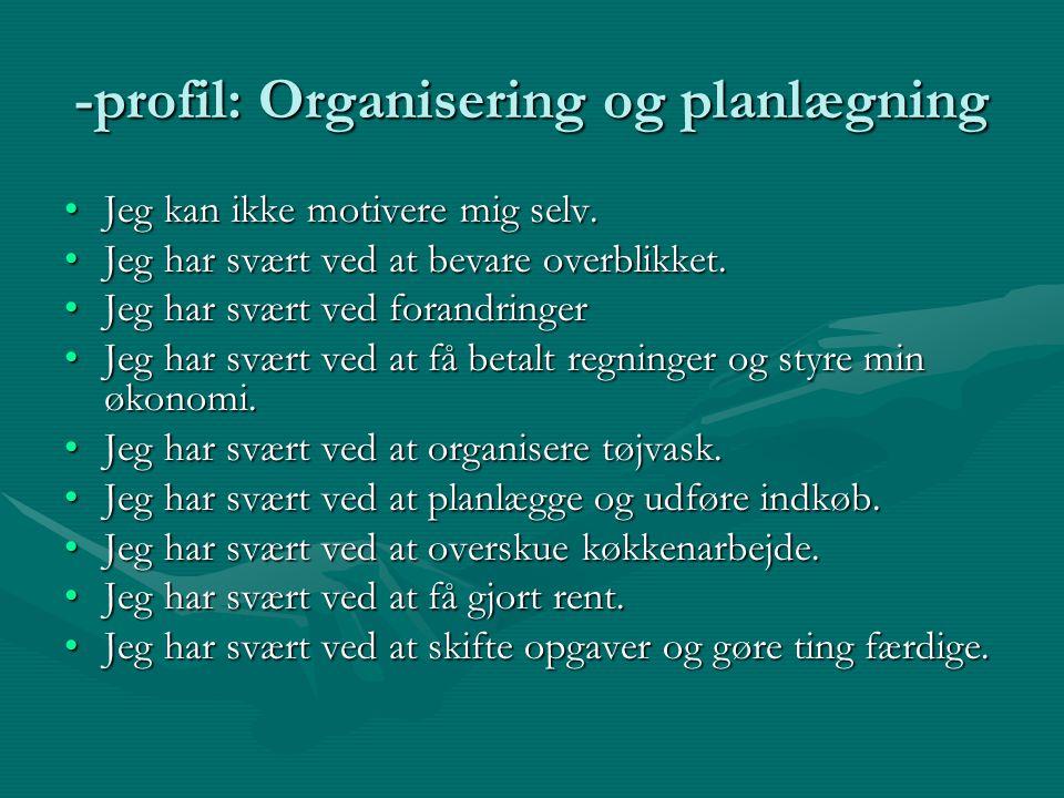 -profil: Organisering og planlægning