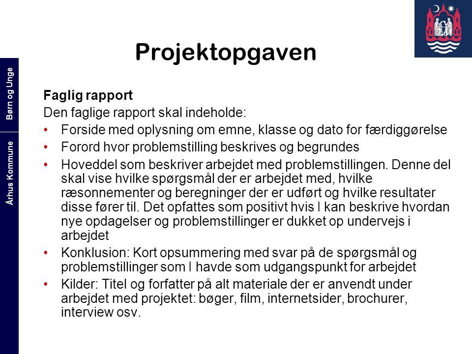 Projektopgaven Faglig rapport Den faglige rapport skal indeholde: