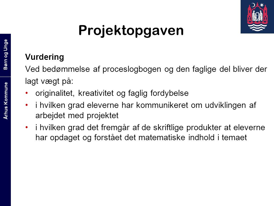 Projektopgaven Vurdering