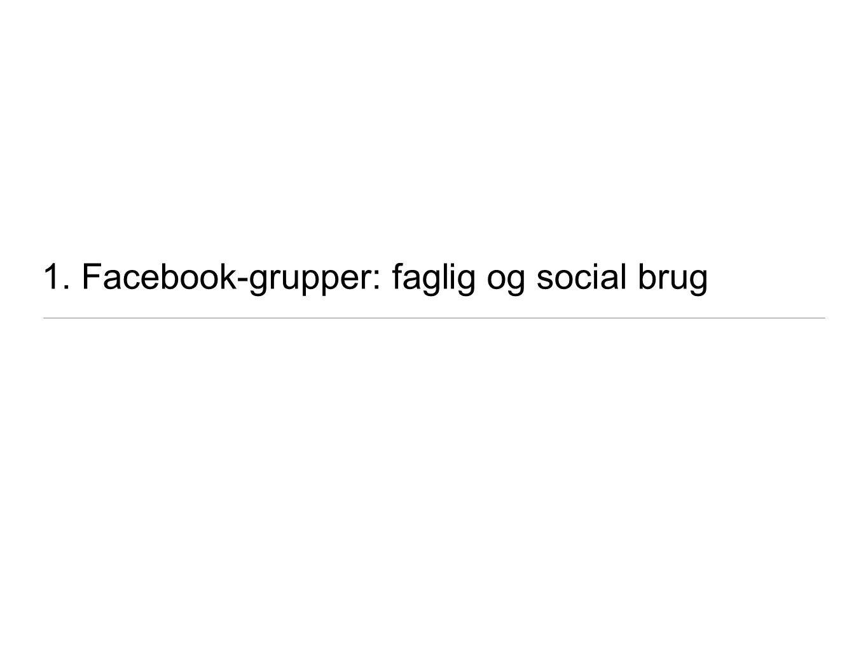 1. Facebook-grupper: faglig og social brug