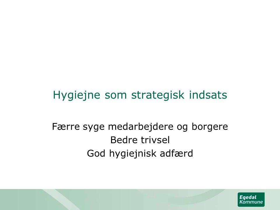 Hygiejne som strategisk indsats
