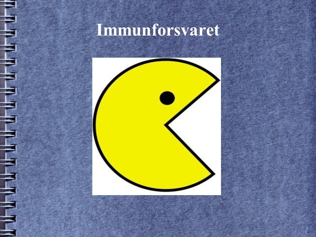 Immunforsvaret