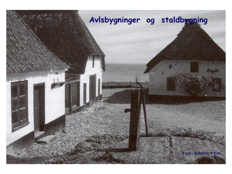 Avlsbygninger og staldbygning