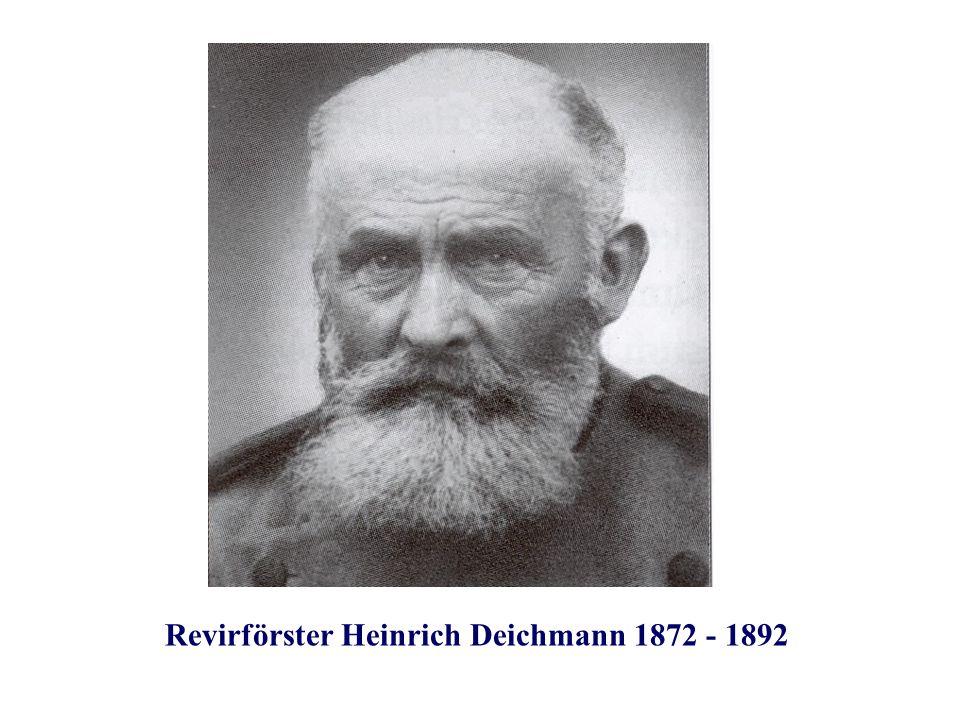 Revirförster Heinrich Deichmann 1872 - 1892
