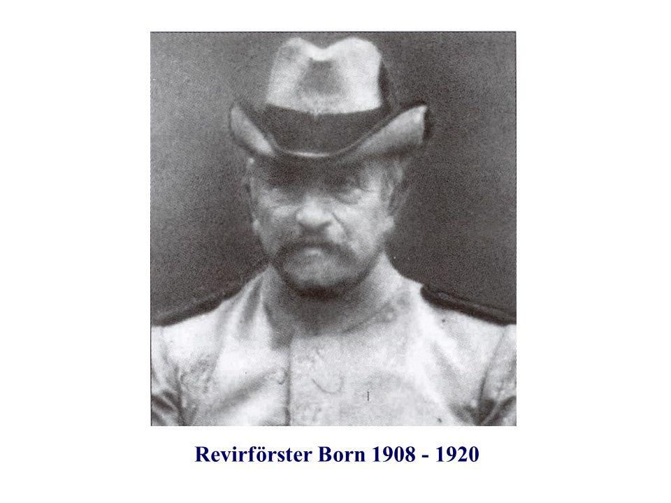 Revirförster Born 1908 - 1920