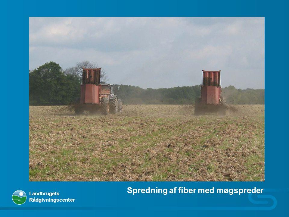 Spredning af fiber med møgspreder