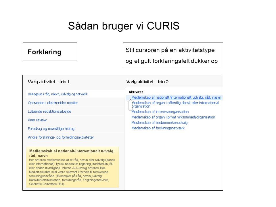 Sådan bruger vi CURIS Forklaring