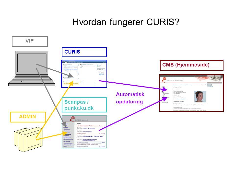 Hvordan fungerer CURIS