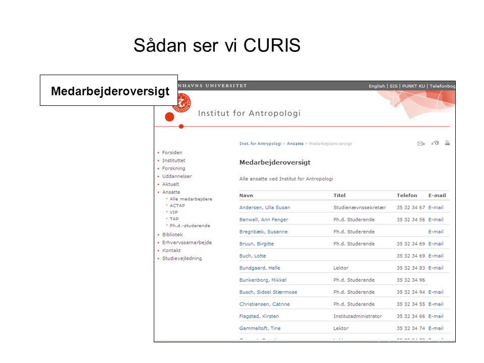 Sådan ser vi CURIS Medarbejderoversigt