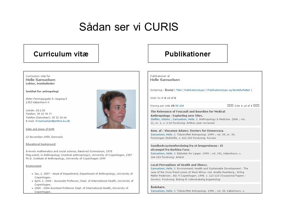 Sådan ser vi CURIS Curriculum vitæ Publikationer