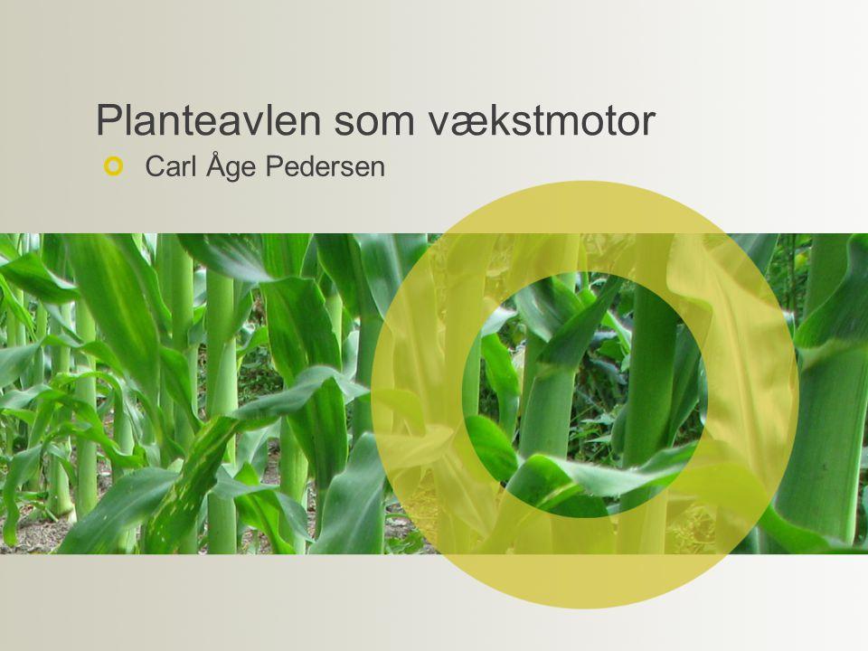 Planteavlen som vækstmotor