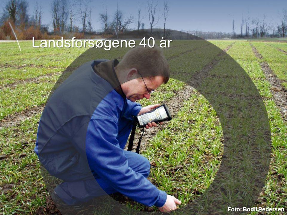 3. april 2017 Landsforsøgene 40 år Foto: Bodil Pedersen 5